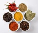 Spice - Kristin Malone Spa Therapy